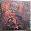 Decrepit Birth - Tape / Vinyl / CD / Recording etc - Decrepit Birth - Dimnishing Between Worlds Ltd Vinyl