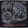 Sadus - Swallowed In Black.jpg