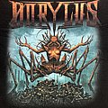 Dorylus 'Without Sin' t-shirt