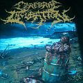 Cerebral Incubation - TShirt or Longsleeve - Cerebral Incubation- Asphyxiating On Excrement