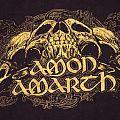 Amon Amarth SKULL RAVEN t shirt