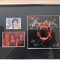 Kittie - Other Collectable - Kittie, framed and signed promo picture