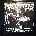 Agathocles - Tape / Vinyl / CD / Recording etc - agathocles -if this is cruel ep