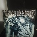 Cradle Of Filth - Tape / Vinyl / CD / Recording etc - Cradle Of Filth - the principle first press