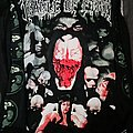 Long Sleeve Cradle of Filth - canvas for a lick of pain TShirt or Longsleeve
