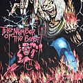 t-shirt iron maiden ´´ the number of the beast ´´