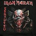 Iron Maiden - Hooded Top / Sweater - Iron Maiden - Senjutsu Hoodie 2021