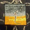Testament - Practice what you Preach patch
