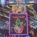 Praying Mantis - Time Tells No Lies vintage patch
