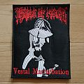 vestal masturbation Patch
