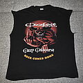 Ozzy Osbourne - TShirt or Longsleeve - Ozzy Osbourne OzzFest 2002 / Rock Comes Home