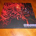 Carnage / Dark Recollections LP