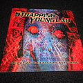 Strapping Young Lad - Tape / Vinyl / CD / Recording etc -  Strapping Young Lad / Heavy As A Really Heavy Thing