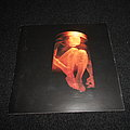 Alice In Chains - Tape / Vinyl / CD / Recording etc -  Alice In Chains / Nothing Safe: The Best Of The Box