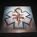 Carcass - Tape / Vinyl / CD / Recording etc -  Carcass / Despicable Yellow with Black Splatter LP