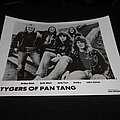 Tygers Of Pan Tang - Other Collectable - Tygers Of Pan Tang / Promo