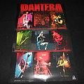 Pantera / Poster Other Collectable