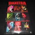Pantera / Poster
