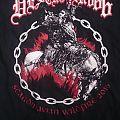 Deströyer 666 - Scandinavian Wildfire 2016 T-Shirt