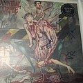 Cannibal Corpse   Bloodthirst LP (signed) Tape / Vinyl / CD / Recording etc