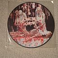 Cannibal Corpse Butchered at Birth  Picture LP Tape / Vinyl / CD / Recording etc