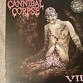 Cannibal Corpse Vile limited LP Tape / Vinyl / CD / Recording etc