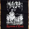 Militia - Patch - Militia - Regiments Of Death patch
