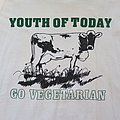 Youth Of Today - Go Vegetarian shirt