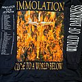 Immolation - TShirt or Longsleeve - Immolation close to a world below