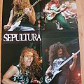 Sepultura - ( Rock Hard ) Poster  Other Collectable