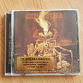 Sepultura - Arise - Re-Released ( Gold Edition ) Tape / Vinyl / CD / Recording etc