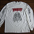 Phrenelith - Spectral Voice split artwork long sleeve (2018)