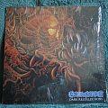 Carnage - Dark Recollections (Vinyl)