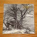 Graveland The Celtic Winter / In the Glare of Burning Churches 2LP