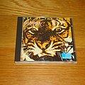 Survivor - Tape / Vinyl / CD / Recording etc - Survivor - Eye Of The Tiger CD