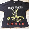 1995 Offspring Tour