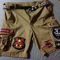 Dickies battle pants