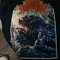 Within Destruction - TShirt or Longsleeve - Shirt