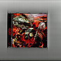 Sodom - In War And Pieces (2010) Jewel case