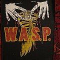 W.A.S.P. - Patch - Animal Back Patch
