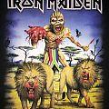Iron Maiden - TShirt or Longsleeve - Iron Maiden - South Africa 2016 event shirt