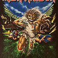 Iron Maiden - TShirt or Longsleeve - Iron Maiden - Twickenham 2008 event shirt