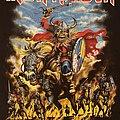 Iron Maiden - TShirt or Longsleeve - Iron Maiden - Scandinavia 2013 event shirt