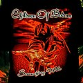 Children Of Bodom - TShirt or Longsleeve - Children Of Bodom - Something Wild