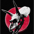 ALICE IN CHAINS  patch a132 new  6 x 10 cm