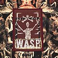 W.A.S.P.-Winged Assassins Patch (Burgundy border)