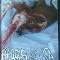 Haggus - Tape / Vinyl / CD / Recording etc - Haggus / Sulsa Split