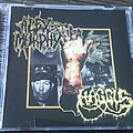 Haggus / Alex Murphy Split