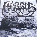 Haggus / Agathocles Split