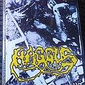 Haggus - Tape / Vinyl / CD / Recording etc - Haggus Four sonx demo